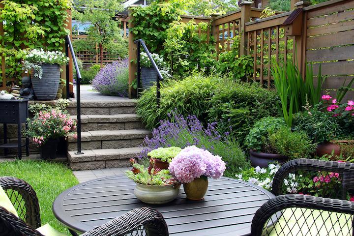Ontwerp kleine achtertuin met plantenborder en verhoogd terras