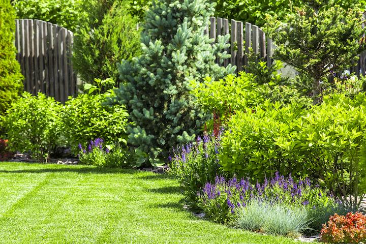 Ontwerp villatuin met bloementuin en kleurrijke borders