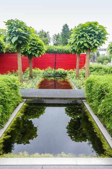 Moderne rechthoekige waterpartij in tuin